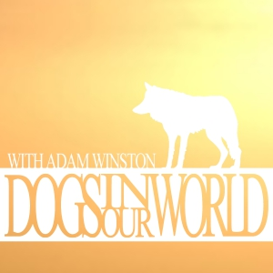 Mark Derr: Dogs and History – S01E02